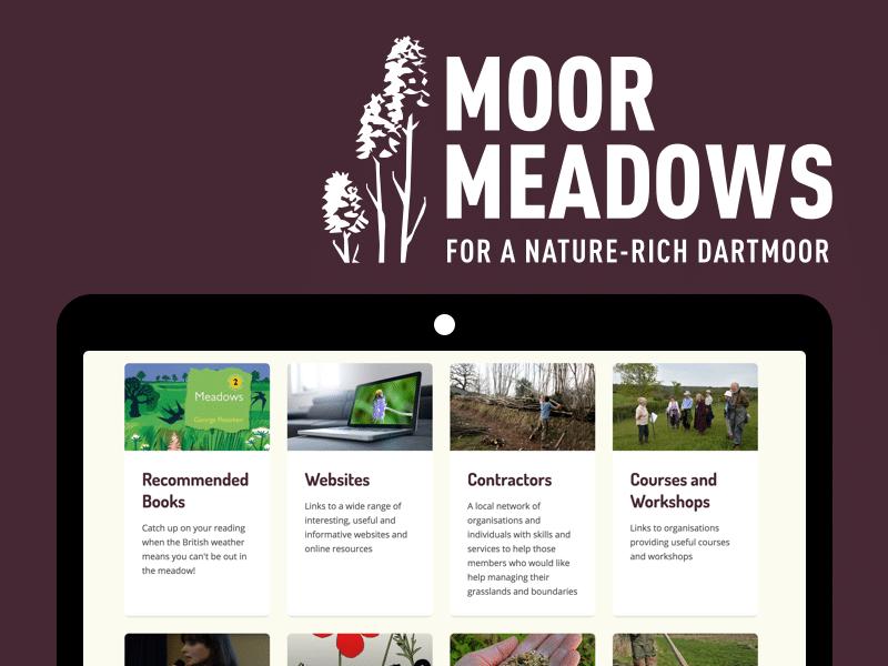 Moor Meadows case study