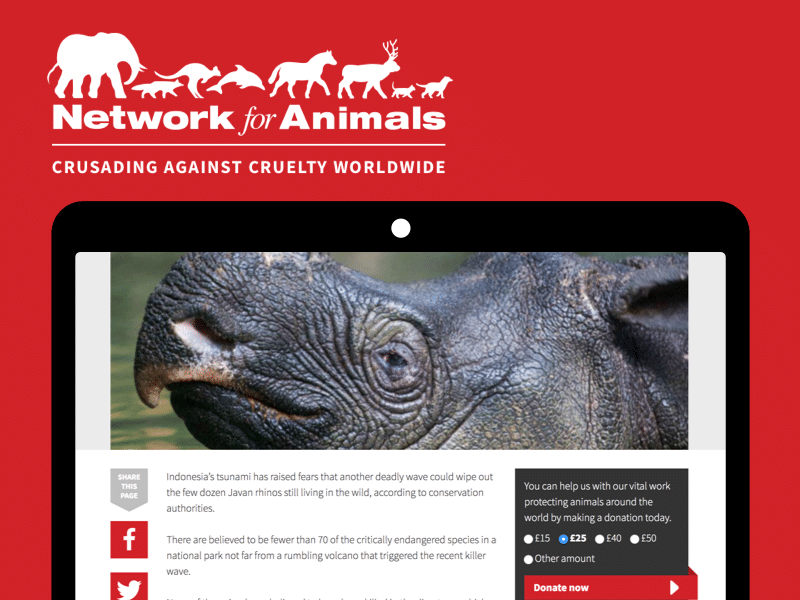 Network for Animals case study