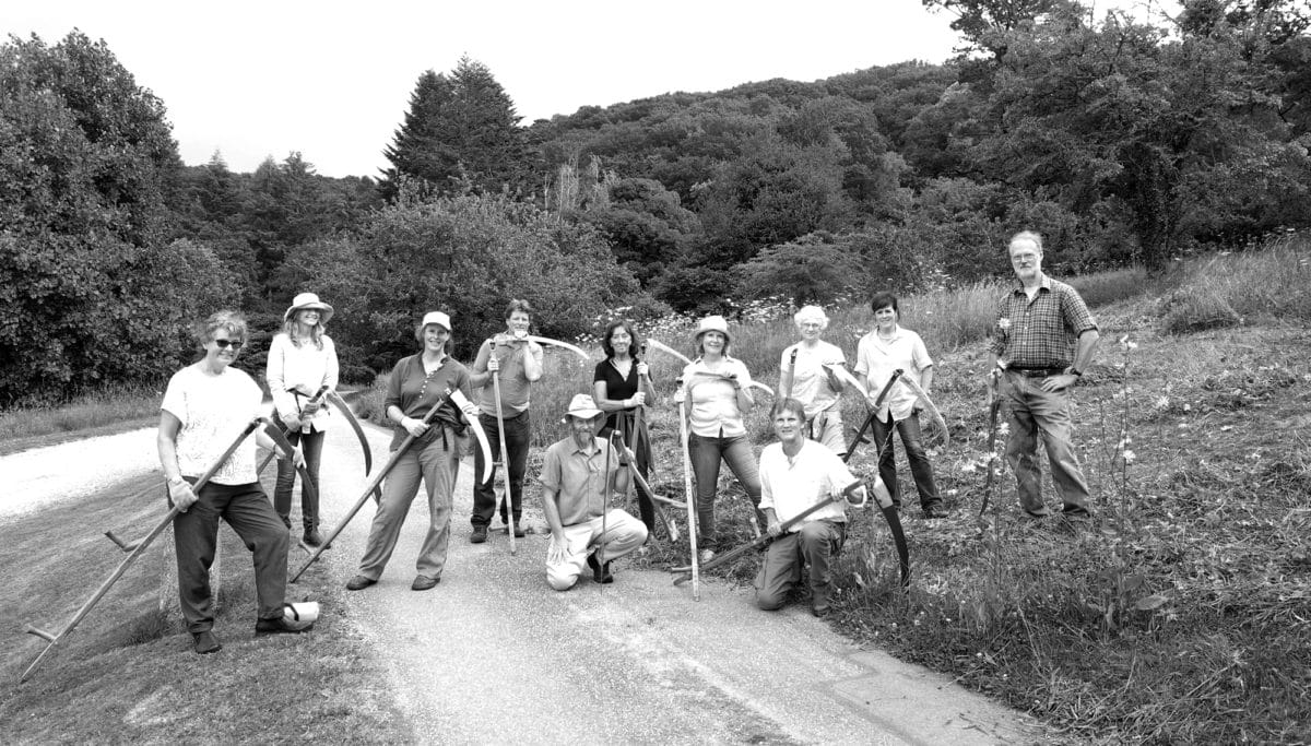 Moor Meadows volunteers with scythes